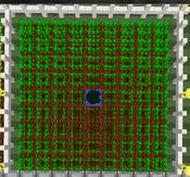 Tutorial - Manual Farms - Carrot
