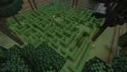 Twilight Forest - Hedge Maze - Above