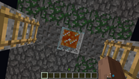 Lava Well Trap 1