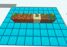 Tiny Cactus - Planted