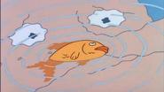 Dead little fish
