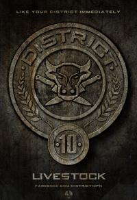 District 10 Seal