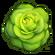 I LettuceA