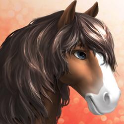 Horse -clydesdale- Tier1 bay sabino