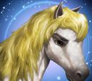 Libra Horse