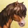 Welsh Pony N1