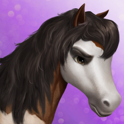 File:American warmblood t3.png