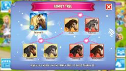 Taurus II Family Tree