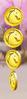 Steeplecheese milestone coins