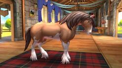 Clydesdale T1