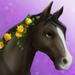 Edie event horse t2 headshot