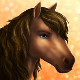 Horse -gotland pony- Tier1