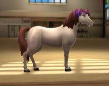Mustang tier 3