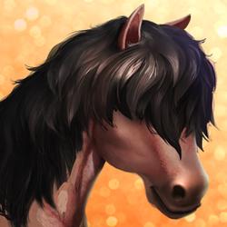 Connemara Pony- T1