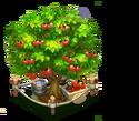 DE Cherry Tree L5