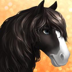 Horse -shire- Tier1 black