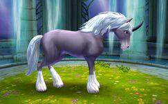 Onyx unicorn tier 1