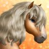 Shetland Pony- T1