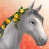 Edie event horse t1 headshot