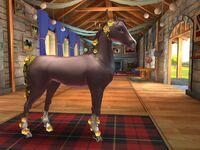 Edie Event Horse T2