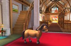 Shetland PonyT3