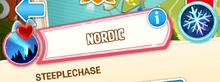 Steeplechase-nordic snow