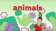 Opening So Many Animals UK 4