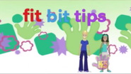 Fit Bit Tips UK Intro