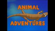 Opening Animal Adventures