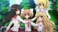 Aa quartet
