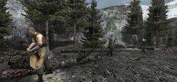 Alpine woodcutters camp