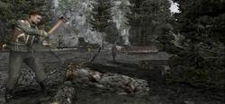 Alpine woodcutters camp 2
