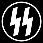 Schutzstaffel Abzeichen Geheime