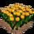 Marketplace Yellow Tulips-icon