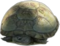 HO Beach Turtle-icon