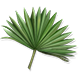 Quest Task Palm Frond-icon