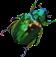 HO MTemple Scarab Beetle-icon