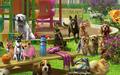 Scene Dog Park (Scene)-icon