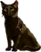 HO Tut Cat-icon
