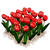 Marketplace Red Tulips-icon