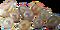 HO ConqC Pearls-icon