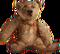 HO StillLife Bear-icon