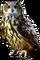 HO Ski Owl-icon
