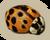 MiniGame S2 Ladybug-icon