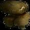HO VShop Mushrooms-icon