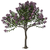 Marketplace Lilac Tree-icon
