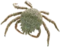 HO UWreck Crab-icon