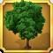 Quest Task Beech Tree-icon