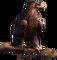 HO PBistro Hawk-icon