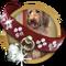 Doggone Dog Questline-icon